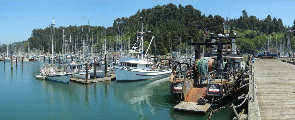 Fishing boats in Noyo Marina